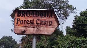 Bwindi Forest National Park Known as Bwindi Gorilla Forest Uganda